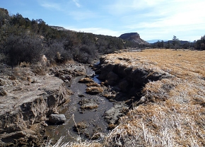 When September 2013 floods roared through the region, sites across Los Alamos National Laboratory, such as the Pueblo Canyon wetland, were damaged.