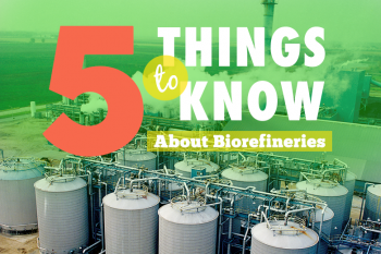 Five Things to Know about Biorefinery Investments