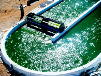 The just-released 2016 National Algal Biofuels Technology Review captures the exciting achievements of the field of algal biofuels, as well as articulates new challenges, lessons learned, and critical next steps. | Photo courtesy of Sapphire, Las Cruces