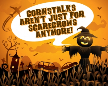 Cornstalks Aren't Just for Scarecrows Anymore