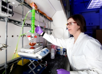 Deanna Pickel is on the Research Staff of the Macromolecular Nanomaterials Group, at Oak Ridge National Laboratory's Center for Nanophase Materials Sciences Division.