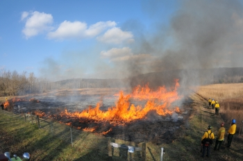 A controlled prairie burn was conducted at the Portsmouth site in mid-December last year.