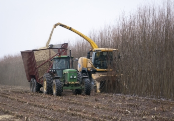 State University of New York College of Environmental Science and Forestry (SUNY-ESF) Project: The New Holland Forage Harvester fitted with the Short Rotation Woody Crop Coppice Header