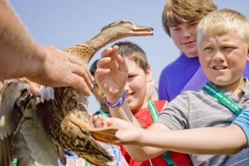 Lone Oak Middle School sixth-graders pet a mallard hen at the third annual Eco Fair May 15 in West Kentucky Wildlife Management Area.