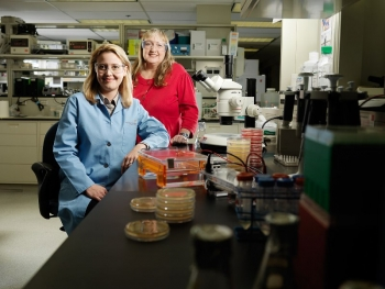 Dr. Margaret Romine (right), Pacific Northwest National Laboratory, mentors postdoctoral fellows and early career scientists on her projects, encouraging them to explore new directions and learn new techniques.