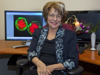 Dr. Mina Bissell has been recognized for her lifetime contributions to the fields of breast cancer research, the enhanced role of extracellular matrix (ECM) and the nucleus environment to gene expression in normal and malignant tissues.