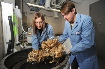 Energy and fuels derived from biomass could someday provide a portion of the nation's energy needs. | Photo courtesy of Idaho National Laboratory.