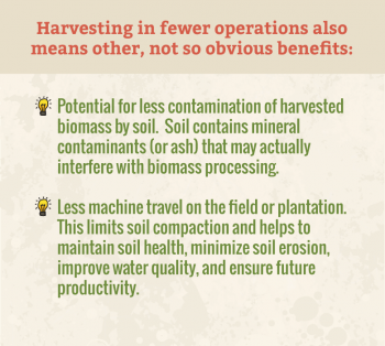 Five Harvesting Technologies are Making Biofuels More Competitive in the Marketplace
