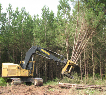 Auburn University Project: Tigercat Tracked Feller Buncher with High-Speed Shear Head