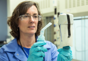 Linda Lewis takes a materials science approach to forensics research at Oak Ridge National Laboratory.   Photo courtesy of Oak Ridge National Laboratory.