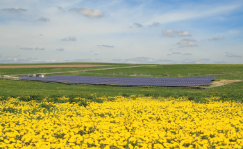 Westby, Wisconsin, is home to Clean Energy Collective's 305-kilowatt Vernon Electric Community Solar Farm. | Photo Courtesy: Clean Energy Collective