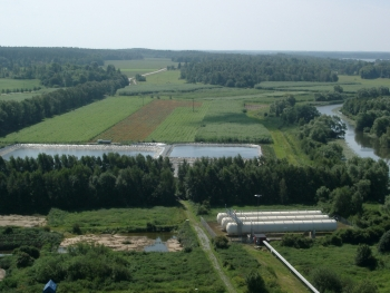 Willow to the rescue - combining bioenergy with waste treatment. Image courtesy of Par Aronsson.