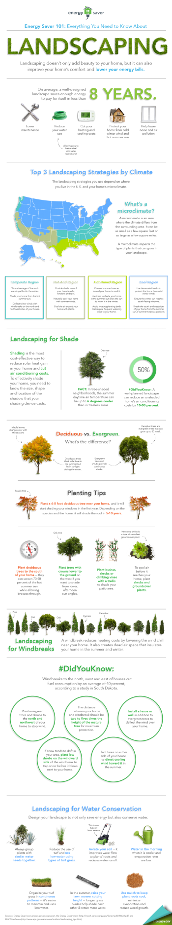 """Our Energy Saver 101 infographic highlights everything you need to know to landscape for energy savings. Download a <a href=""""/node/898361"""">high resolution version</a> of the infographic or individual sections. 