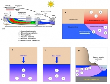 Figure 3: Conceptual model of uranium attenuation processes in the Savannah River F Area Seepage Basins plume, including adsorption/desorption (1); dissolution/precipitation (2); mixing/dilution (3); aqueous reactions (4); microbial interactions (5); and abiotic organic interactions (6).