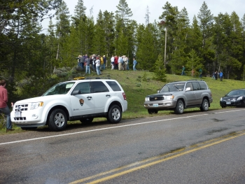 With help from the Clean Cities National Parks Initiative, Grand Teton National Park was able to purchase hybrid electric vehicles, which the park's Wildlife Brigade use to spark discussions about emission and fuel efficiency. | Photo courtesy of the National Park Service.