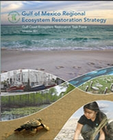 Final Strategic Plan Released by Gulf Coast Ecosystem Restoration Taskforce