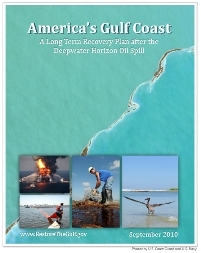 A Path Forward for the Gulf Coast