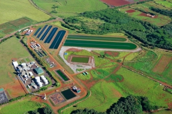 Aerial photograph of the company's algae test ponds in Kauai, Hawaii. | Photo courtesy of Global Algae Innovations, Inc.