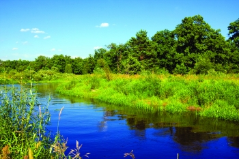 BETO's sustainability work includes assessing water resource use and water quality impacts of bioenergy production.