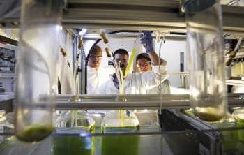 The Algae Technology Education Consortium (ATEC) is developing opportunities for education and training for next-generation jobs in the algal industry. | <em>Photo courtesy of ATEC</em>
