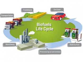 Researchers at Virginia Tech are working to show how biogasoline could potentially be created in existing petroleum refineries, instead of at new biorefineries as shown here. | File illustration