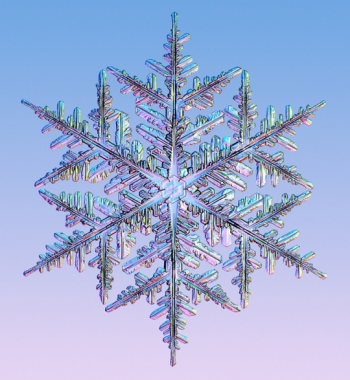 Snowflakes always have six sides, their form and shape depend on temperature and moisture -- and they may have also inspired a pathway to a new alternative source of energy. | Image courtesy of SnowCrystals.com.