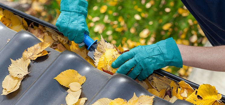 Cleaning Your Gutters Will Help Prevent Ice Dams That Can Cause Leaks And  Water Damage.