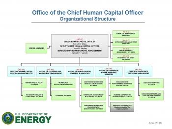 HC Organizational Chart