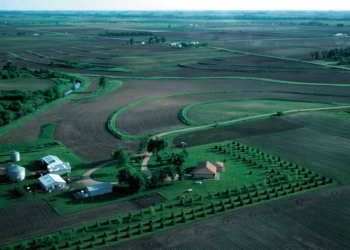 Windbreaks, such as this farmstead windbreak in northwest Iowa, can reduce home heating costs. | Photo courtesy of Lynn Betts, USDA Natural Resources Conservation Service.