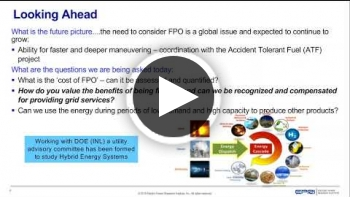 Technology Overview for Integrated Nuclear – Renewable Energy Systems