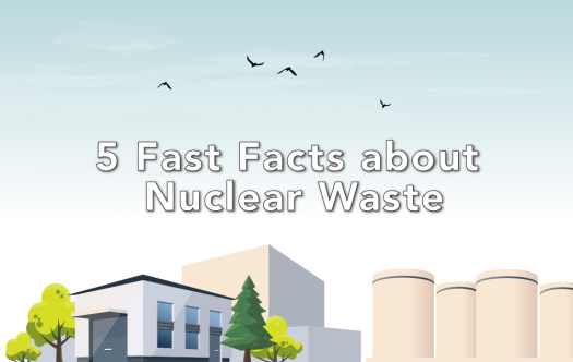 Graphic of a nuclear power reactor with nuclear waste in concrete casks.