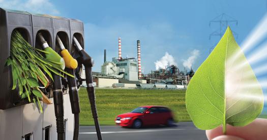 Bioenergy Basics | Department of Energy