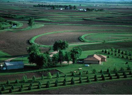 Landscape Windbreaks and Efficiency | Department of Energy