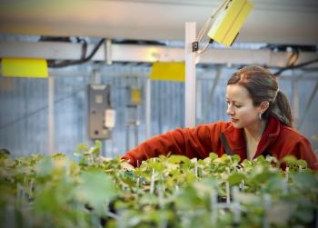 Biomass Research at Oak Ridge National Laboratory