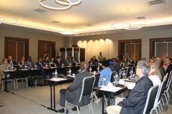 Understanding Natural Gas and LNG Options Workshop, Maputo Mozambique.