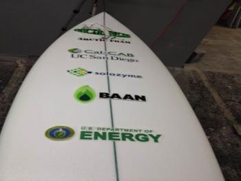 algae surfboard logo photo