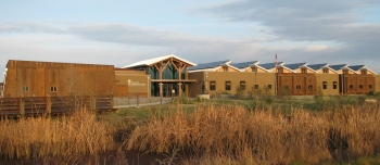 Image of the front of a light brown, yellow and tan net zero building with green grass in the background and tall golden grass in the foreground. A light blue sky looms above the building's roof line.