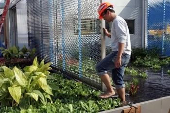 A man walks barefoot through a garden