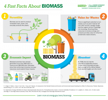 4 Fast Facts About Biomass Inforgraphic