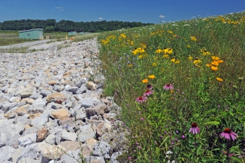 On-Site Disposal Facility valve houses seen behind restored habitat at the Fernald Preserve.