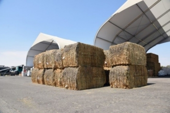 Stacks of alfalfa crops stored under a canopy.