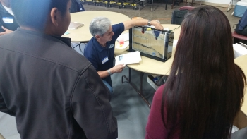 Students learn groundwater concepts with a 3-D model.