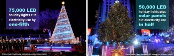 A Tale of Two Trees and their LEDS