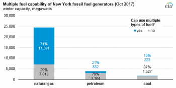 multiple fuel capability of new york fossil fuel generators