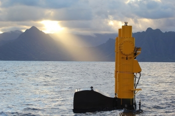Photo of a wave energy device.