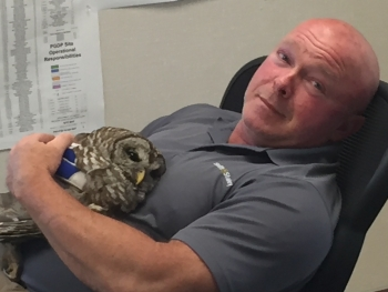 The injured owl rests in the arms of Swift & Staley Operations and Maintenance Manager Kyle Gore.