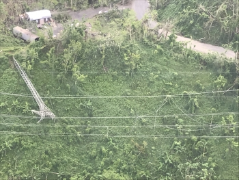 Photo of downed transmission line in Puerto Rico
