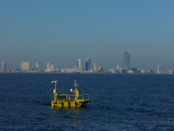 Photo of a buoy in the ocean with a city skyline in the background.