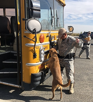 Hanford Site patrolman and master handler Ed Pacheco runs his canine partner Chance through a series of searches on a bus used for training purposes.