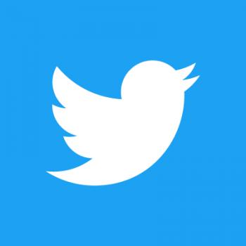 Twitter Social Media Icon